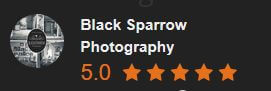 Black-Sparrow-Photography